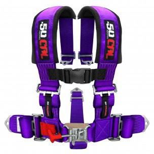 http://50caliberracing.com/5332-thickbox_default/50-caliber-racing-2-5-point-harness-seat-belt.jpg